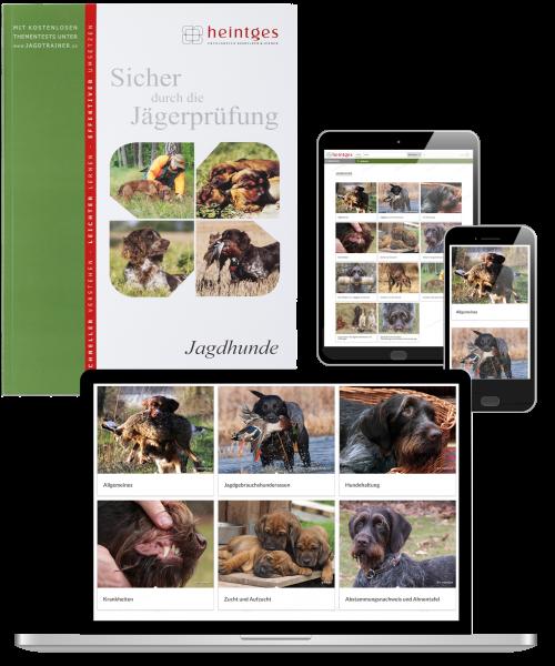 Kombiangebot Arbeitsblätter Jagdhunde Print & Digital
