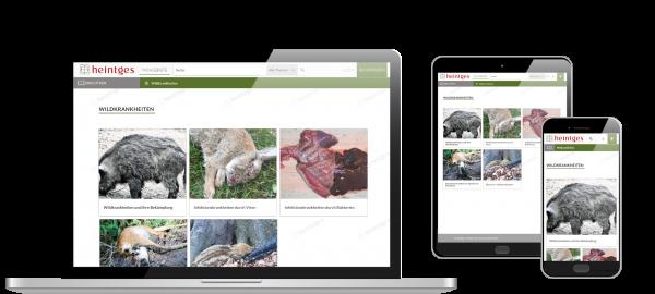 Digitale Arbeitsblätter Wildkrankheiten, Versorgen & Verwerten von Wild
