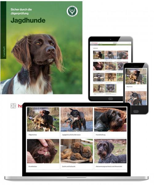 Kombiangebot Arbeitsblätter Jagdhunde (Print & Digital)
