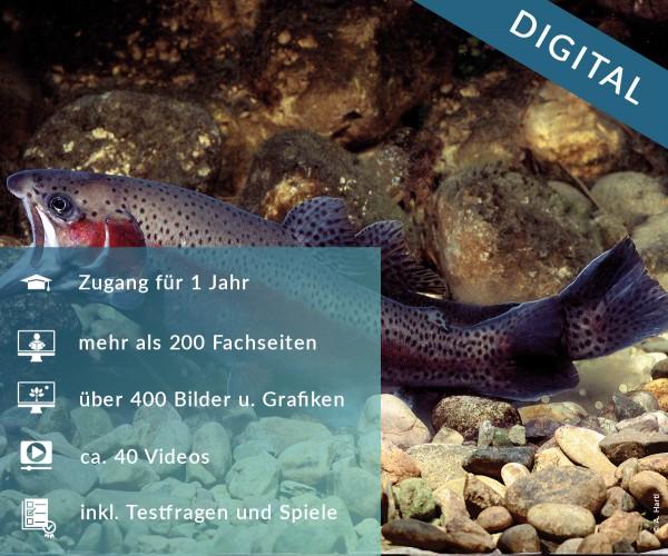 Digitale Arbeitsblätter Süßwasserfische