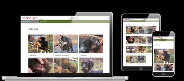 Digitales Arbeitsblatt Jagdhunde