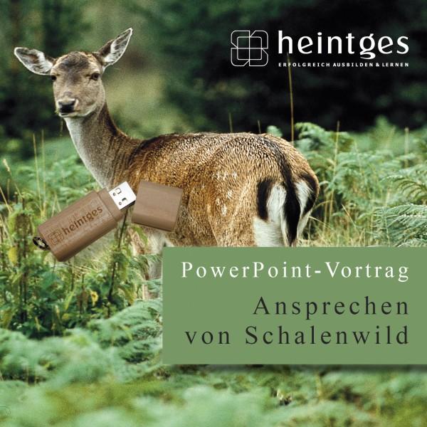 Ansprechen von Schalenwild - PowerPoint-Vortrag
