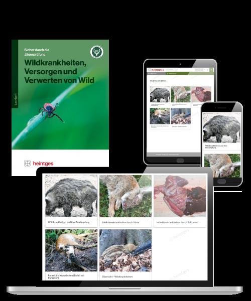 Kombiangebot Arbeitsblätter Wildkrankheiten, Versorgen und Verwerten von Wild Print & Digital