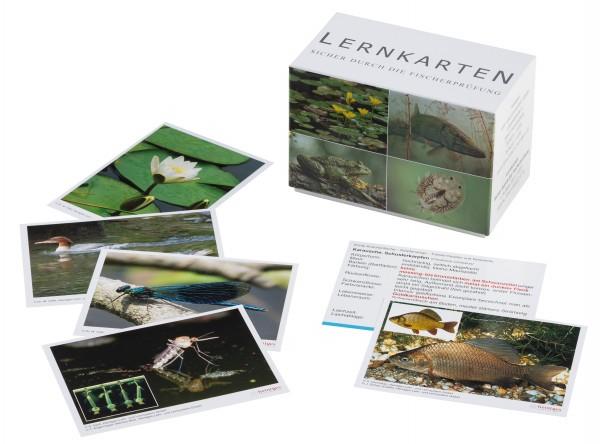 Lernkarten - Sicher durch die Fischerprüfung