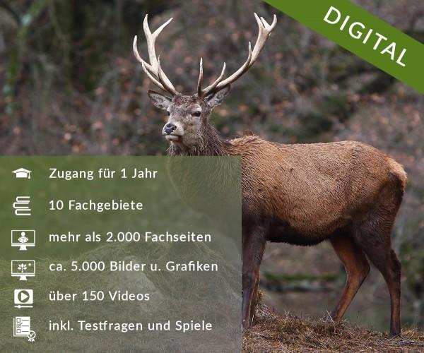 Digitale Arbeitsblätter Grundausstattung Jagd