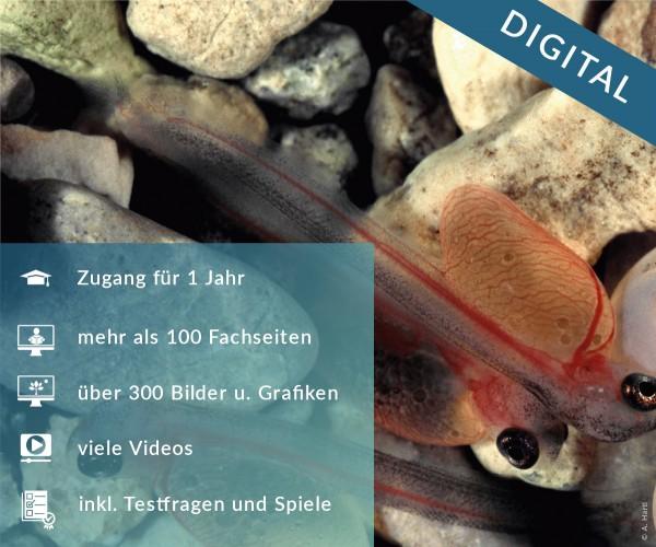 Digitale Arbeitsblätter Allgemeine Fischkunde und Fischkrankheiten