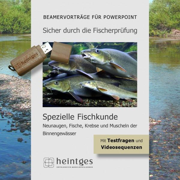 Süßwasserfische - Neunaugen, Fische, Krebse und Muscheln der Binnengewässer