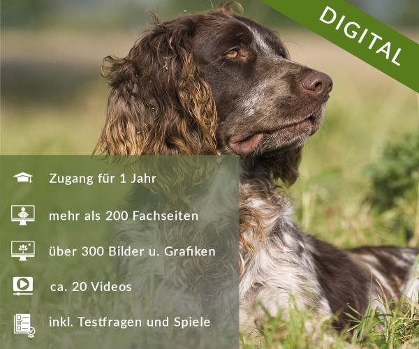 Digitale Arbeitsblätter Jagdhunde