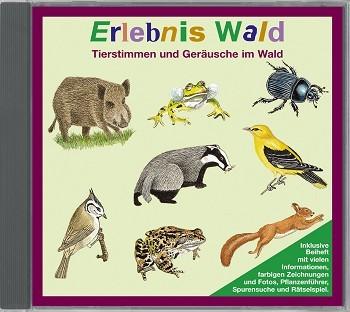 Erlebnis Wald - Audio-CD